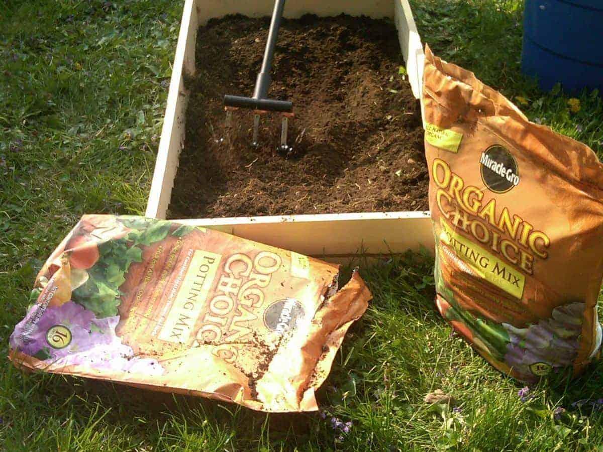 Preparing Our Garden