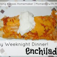 Easy Weeknight Dinner- Enchiladas