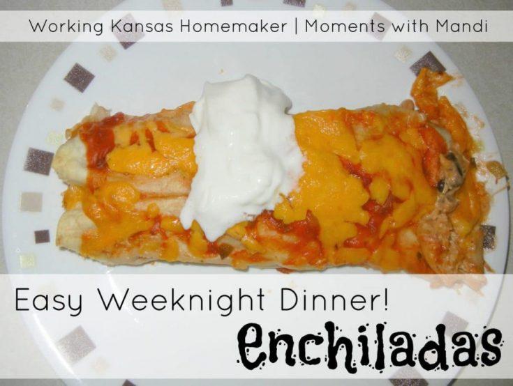 Easy Weeknight Dinner- Enchiladas