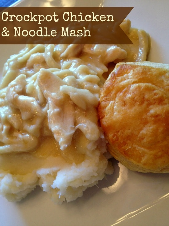 Crockpot Chicken and Noodles Mash