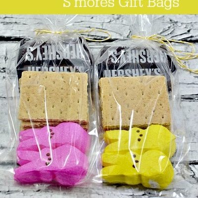 Easter PEEPS S'mores Gift Bag