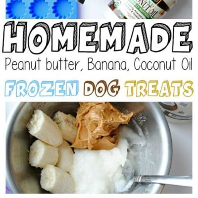 Homemade Frozen Banana Peanut Butter Coconut Oil Dog Treats