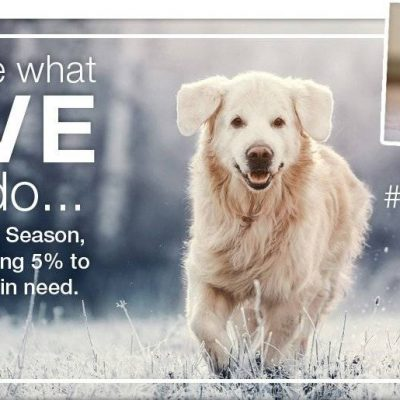 Help Only Natural Pet Donate To Animal Shelters with the #IMAGINE5 Campaign