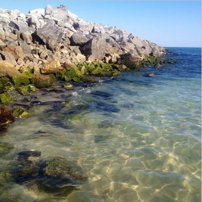 Visit Gulf County Florida For a Nature-Lover's Dream Vacation
