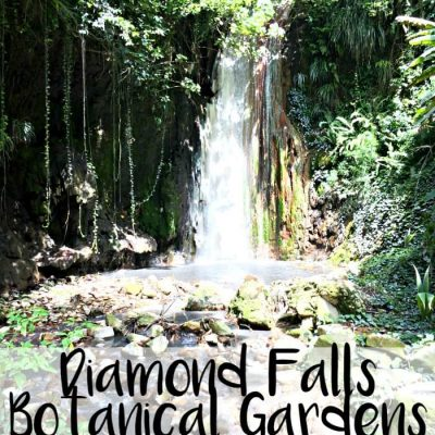 Diamond Falls Botanical Gardens in Saint Lucia