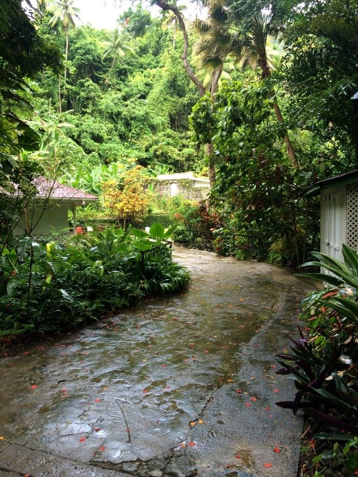 Raining at the Botanical Gardens