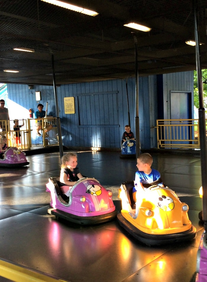 Bumper Cars at King Island