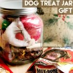 Last Minute Doggie Treat Jar Gift