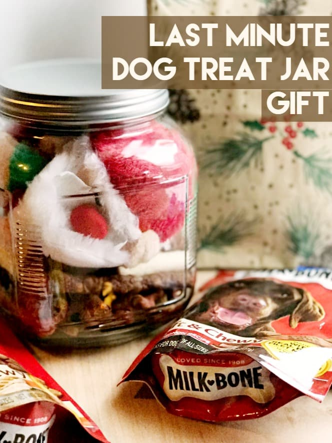 Last Minute Doggie Treat Jar Gift