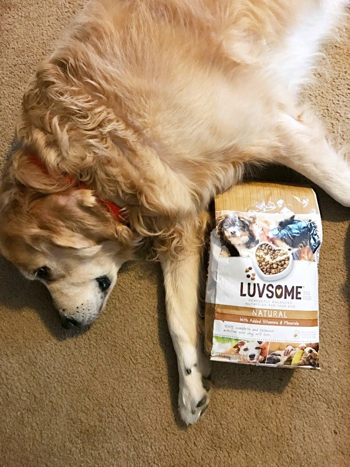 Dogs love Luvsome