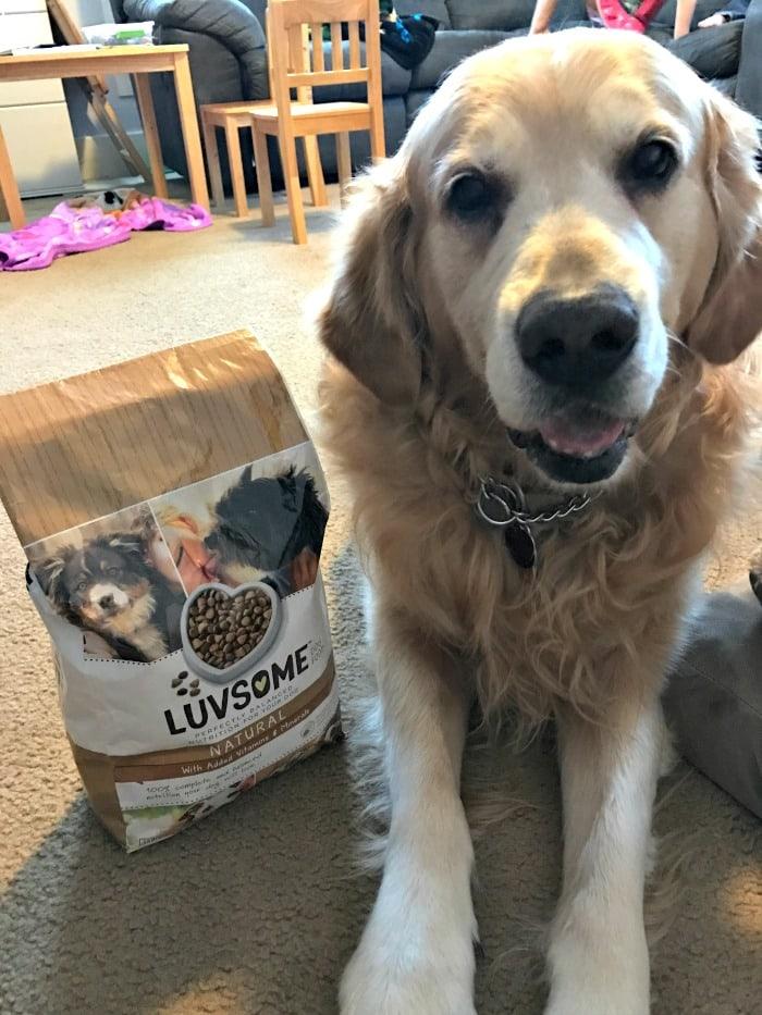 Happy Mealtime, Happy Pups