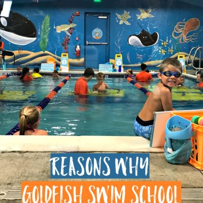 Reasons Why Goldfish Swim School is a MUST For Any Family