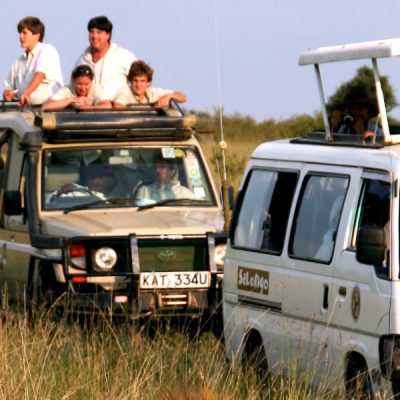 How To Get The Most Out Of A Safari Vacation