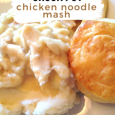 Crockpot Chicken and Noodle Mash